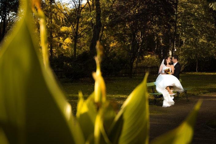 Hochzeit im Park von Schönbusch