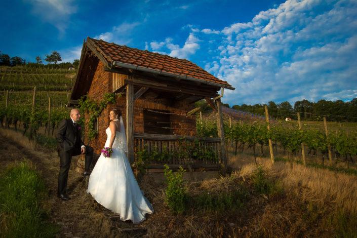 Brautpaar in den Michelbacher Weinbergen