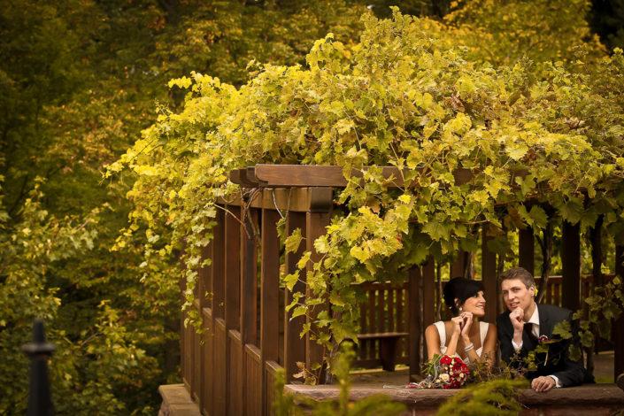 Brautpaar im Alten Obstkeller bei Mönchberg